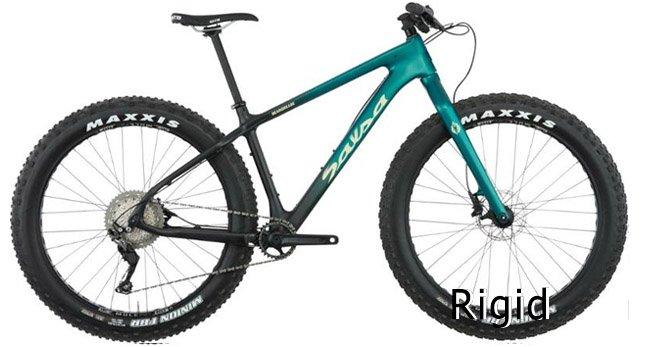 Rigid mountain bikes