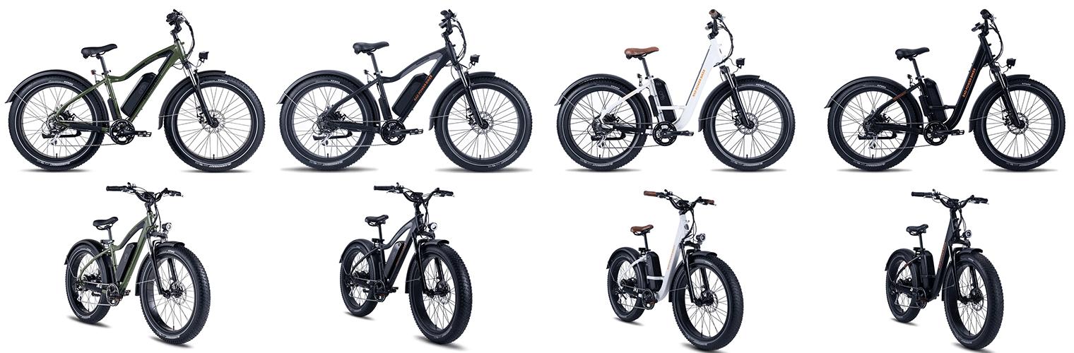 radcity radrovers bikes