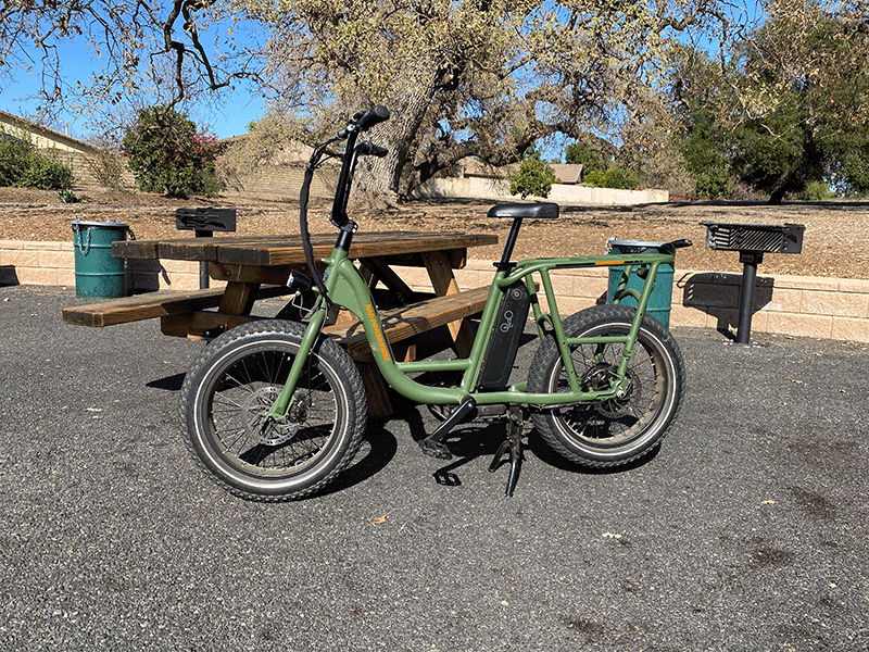 RadRunner 1 electric bicycle standing in the park