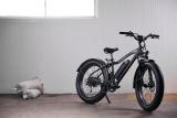 Rad Power Bikes – RadRover 5 Review