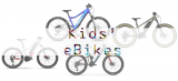 Best Electric Bikes for Kids 2021