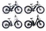 Overview of 2020 Rad Power Bikes RadRover 5